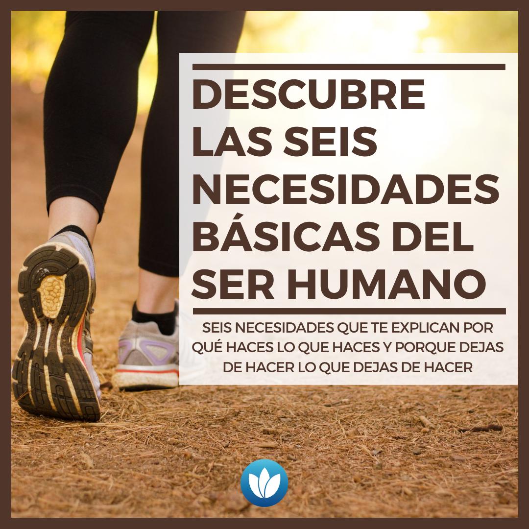 Descubre las seis necesidades básicas del ser humano